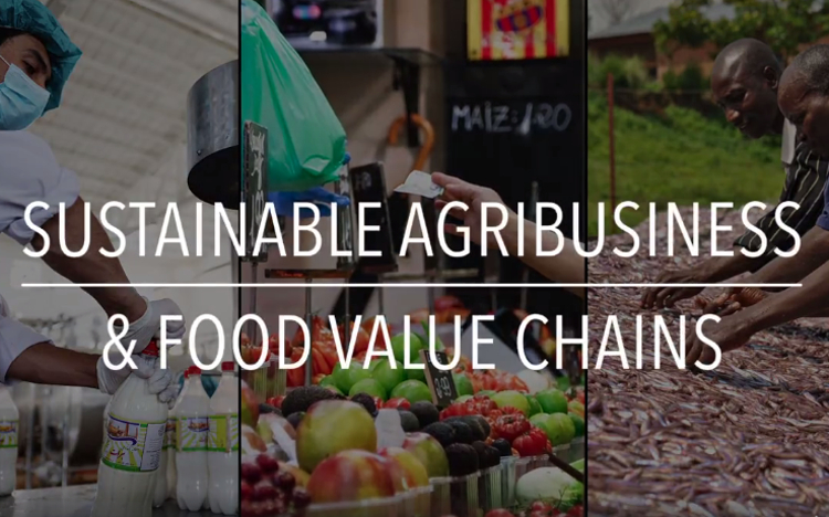 Sustainable Agribusiness and Food Value Chains